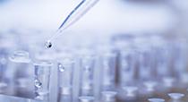 SmartAmp® H1N1 pdm 2009 インフルエンザウイルス検出試薬キット