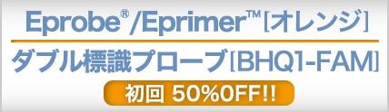 Eprobe®, Eprimer™
