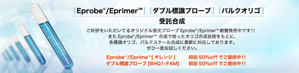 Eprobe / Eprimer